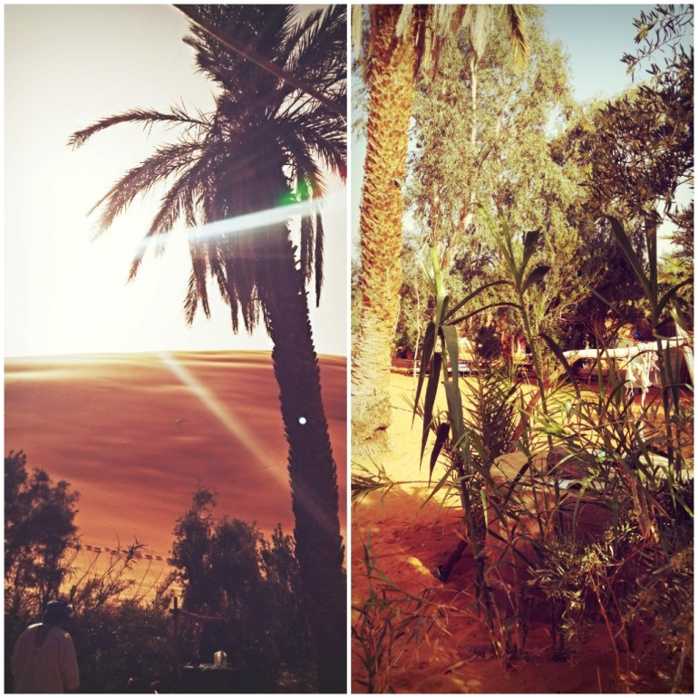 Pozo de agua. Oasis del Desierto del Sahara de Marruecos.